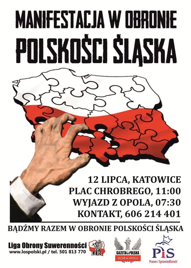 Opole_manifestacja_lipiec