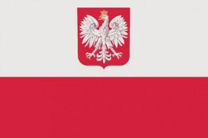 Poparcie Organizacji Polonijnych dla Apelu Pamięci Ministra A. Macierewicza