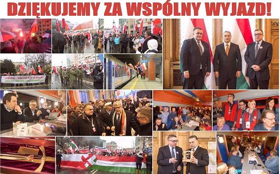 Wegry2016a