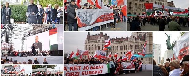 """[Tydzień w Klubach """"GP""""] Wzruszające uroczystości w Budapeszcie"""