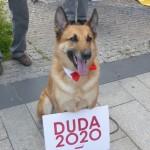 Kraków_Duda_ (6)
